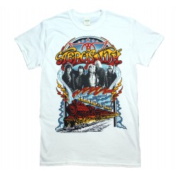 Aerosmith Shirt Train Kept A Rollin